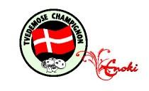 www.Tvedemose.dk